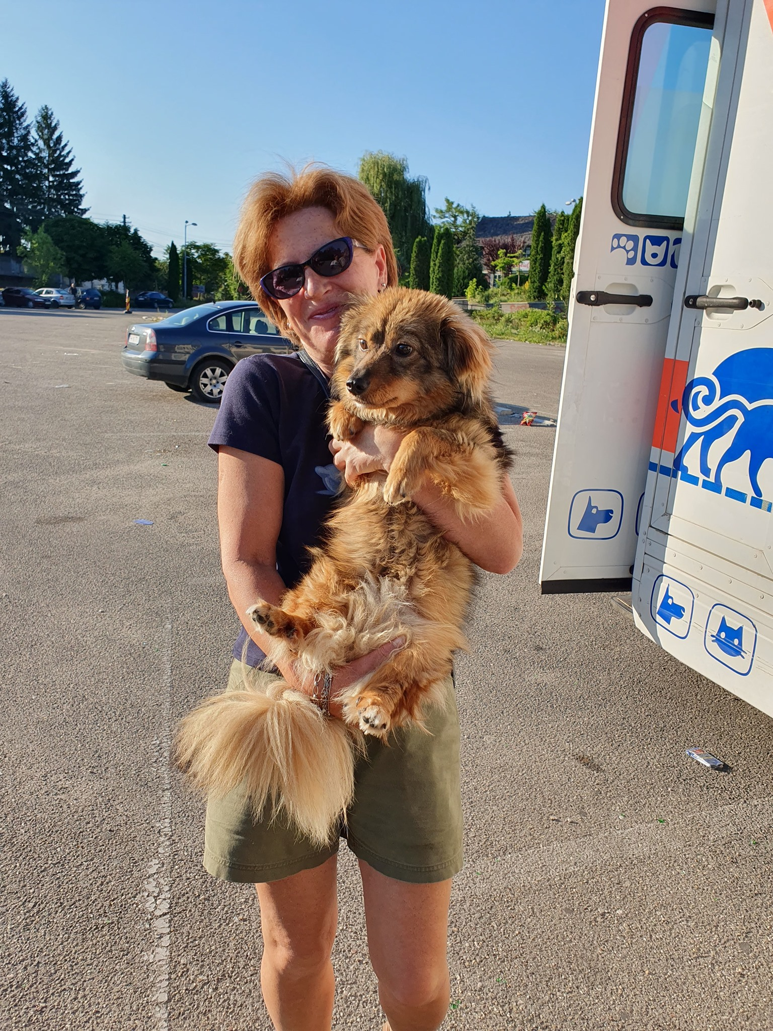 Campanie de sterilizare pisici și câini- Câmpina-doamna și cățelul maro la clinica mobilă