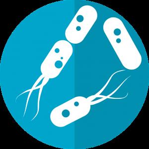 Probioticele sunt benefice la alergii alimentare